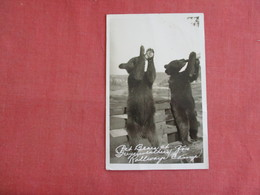 RPPC Pet Bears Rollways Camp   Ref 3138 - Ours