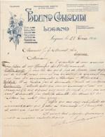 Italie Facture Lettre Illustrée 28/2/1904 BRUNO COLLORIDI Vini Chianti, Liquori Olli Di Lucca E Di Nizza  LUGANO - Italie