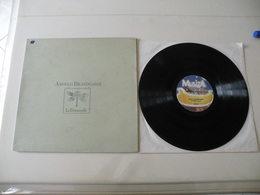 Angelo Branduardi 1979 (Titres Sur Photos) - Vinyle 33 T LP - Other - Italian Music