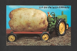 HUMOUR - ILE DU PRINCE ÉDOUARD - PRINCE EDWARD ISLAND - HOW WE GROW EM ON - Humour