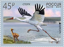 Russia. 2019 Europa. Birds. - Europa-CEPT