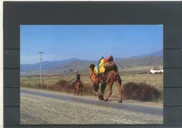 """TURCHIA - Anatolia - """"Percorso Dell'antica Rotta Di Caravan"""" - Cartolina Non Viaggiata. - Turchia"""