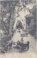 Cpa Asie – Cambodge – Kompong-Cham ( Charrettes à Bœufs ) - Cambodge