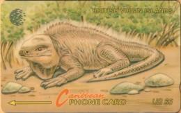 Virgin Islands - GPT, BVI-23B, 23CBVB, BVI Wild Life - Iguana, Spanish Text, Reptiles, 7.500ex, 1995, Used As Scan - Virgin Islands