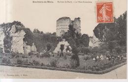 Environs De Blois Ruines De Bury  1907 - Blois