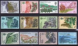 Tristan Da Cunha 1972 Set Of Stamps To Celebrate Flowering Plants. - Tristan Da Cunha
