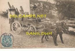 39 // CHAMPAGNOLE , Transport Du Lait Dans Les Montagnes  ATTELAGE DE CHIENS - Champagnole