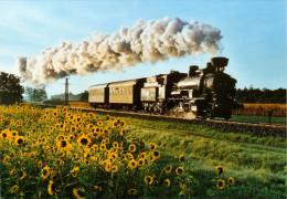 AK Eisenbahn Graz-Köflacher-Bahn GKB Lokomotive 1D-n2v Lok Lieboch-Schadendorf Österreich Railway Austria Steiermark - Eisenbahnen