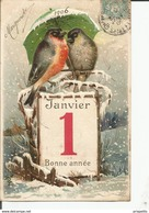 °°° FANTAISIE °°°° GAUFFREE  °°°   1er Janvier   1906 Bonne Annee Oiseau Parapluie  °°°   245 °°° - Nouvel An