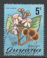 Guyana 1971. Scott #136 (U) Flora, Annatto Tree * - Guyane (1966-...)