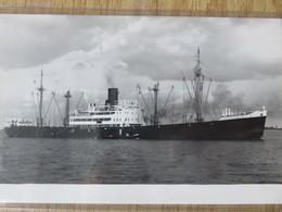 DRESDEN  1937  North German Lloyd - Cargos