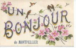 UN BONJOUR DE MONTPELLIER ( Déssin: ? ) - Montpellier