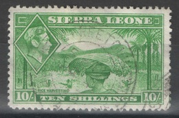 Sierra Leone - YT 170 Oblitéré - Sierra Leone (...-1960)