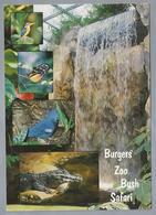 NL.- ARNHEM. Burgers` Zoo Bush Safari. Krokodil. Vlinder. Vogels. Waterval. - Andere