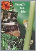 NL.- ARNHEM. Burgers` Zoo Bush Safari. - Andere