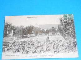 78 ) Rambouillet - La Ruche N° 5 - Le Jardin Potager - Année 1909 - EDIT : Comptoir Parisien - Rambouillet