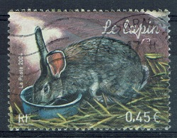 France, Rabbit, 2004, VFU - France
