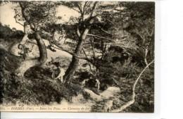 Dpt 83 Bormes Dans Les Pins Chemin De Fer Du Sud De La France No881 Ed LL - Altri Comuni