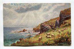 Manacle Rocks Cornwall - England