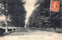 91 209 SOISY SOUS ETIOLLES L'Allée Des Tilleuls - France