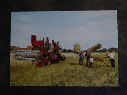 MOISSONNEUSE  TRAVAUX DES CHAMPS MOISSON - Farmers