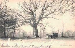91 19 SOISY SOUS ETIOLLES La Forêt De Sénart Le Chêne Prieur - France