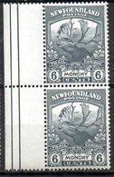 TERRE NEUVE - (Colonie Britannique) - 1919 - Paire Du N° 105 - 6 C. Gris - (Monchy) - Great Britain (former Colonies & Protectorates)