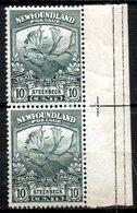 TERRE NEUVE - (Colonie Britannique) - 1919 - Paire Du N° 107 - 10 C. Gris-vert - (Steenbeck) - Great Britain (former Colonies & Protectorates)