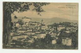 RIOFREDDO - PANORAMA VIAGGIATA FP - Autres