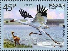 2019-2436 Russia 1v EUROPA CEPT Fauna. Birds: Siberian Crane Mi 2653 ** - 1992-.... Fédération