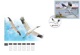 2019-2436 Russia FDC Canc Moscow EUROPA CEPT Fauna. Birds: Siberian Crane Mi 2653 - FDC