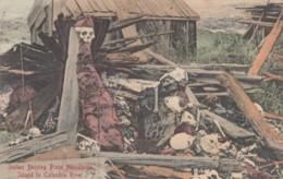 Indian Native Burial Place Memalosse Island Columbia River Between Washington & Oregon, C1900s Vintage Postcard - Native Americans