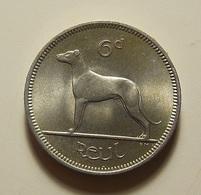 Ireland 6 Pence 1960 Varnished - Irlande