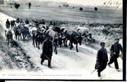 Guerre 14-18 Vie A L Arriere Territoriaux Francais Du Service De Ravitaillement - Guerra 1914-18