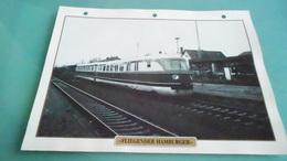 DCARTE DEPHOTO DE TRAIN N° DE CASIER 5PHOTO 250 X 185 - Trains