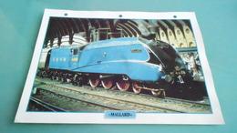 GBCARTE DEPHOTO DE TRAIN N° DE CASIER 7PHOTO 250 X 185 - Trains