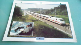 DCARTE DEPHOTO DE TRAIN N° DE CASIER 13PHOTO 250 X 185 - Trains