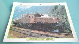 SCARTE DEPHOTO DE TRAIN N° DE CASIER 36PHOTO 250 X 185 - Trains