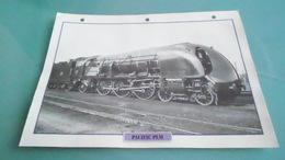 FCARTE DEPHOTO DE TRAIN N° DE CASIER 42PHOTO 250 X 185 - Trains