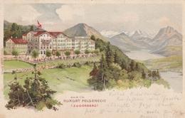 Kurort Felsenegg-Zugerberg-Litho 1905 - ZG Zoug