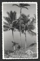 COLOMBIA ALREDEDORES DE BUENAVENTURA CALI 1962 - Colombia