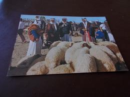 B712   Beer Sheva Market Day Non Viaggiata - Israele