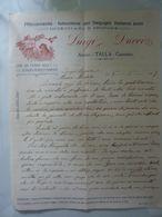 """Lettera Manoscritta """"LUIGI DUCCI  Allevamento - Istruzione Del Segugio Italiano Puro Arezzo TALLA - Casentino""""  1917 - Manuscripts"""