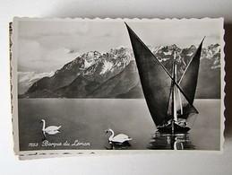 SUISSE - Lot 126 - 50 Anciennes Cartes Postales Différentes - Cartes Postales