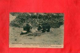 F2501 - GRENOBLE - 38 - Exposition Internationale De La Houille Blanche - Batoum Et Mira - Oursons - Andere Gemeenten