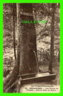 GERARDMER (88) - LES PERLES DE VOLOGNE, SOURCE DANS UN SAPIN - CIRCULÉE EN 1923 - C. LARDIER - - Gerardmer