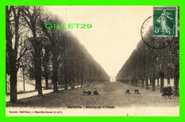 MAINVILLE (91) - AVENUE DU CHÂTEAU - GARENNE, CAFÉ-TABAC - CIRCULÉE EN 1916 - A. BREGER FRÈRES - - Draveil