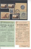 CACHETS + VIGNETTES CINDERELLA STAMP + CARTES DE DENREES 1939 WW2 SUISSE INTERNES CAMP INTERNEMENT /FREE SHIP. R - Marcophilie