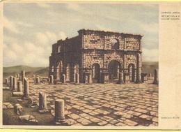 ALGERIA - Lambaesis - Africa Romana - Pretorio Della III Legione Augusta - Dandolo Bellini - Not Used - Algeria