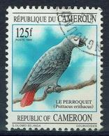 Cameroon, African Grey Parrot, 1995, VFU - Cameroon (1960-...)